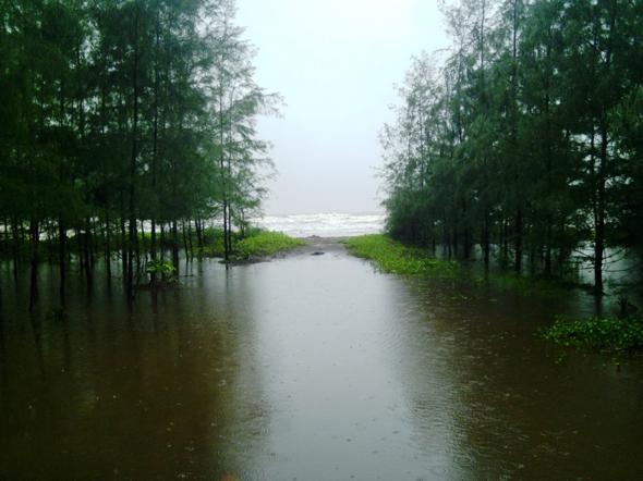 konkan-rain-1